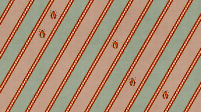 capsule 19